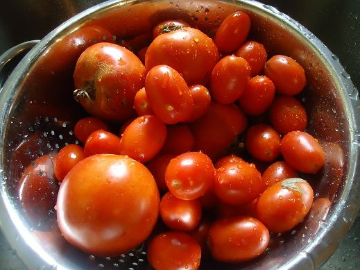 Oven Roasted Tomato Sauce and guess what? just figured out a way to make tomato sauce in the oven and it's easy!!!!