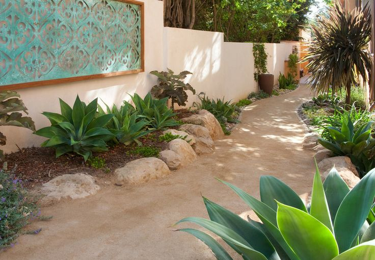 succulents - agave attenuata - water wise plants - wall art - boulders - decomposed granite - pathway - side yard - kalanchoe beharensis- stucco wall - drought tolerant landscape - tree cordyline