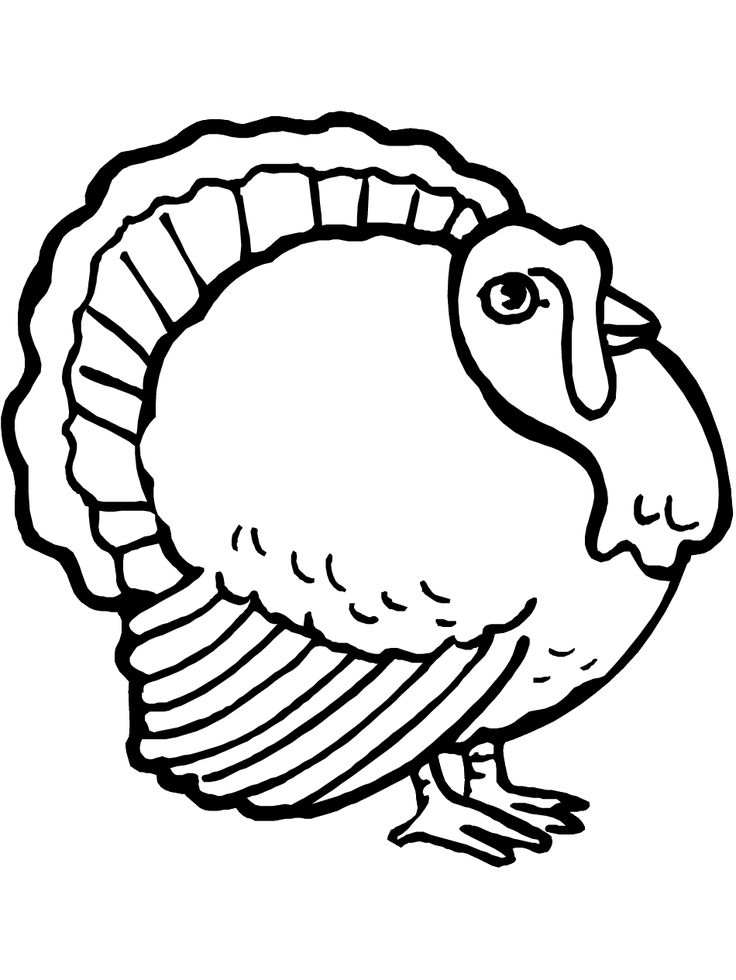 34 best turkey images on Pinterest   Coloring pages ...