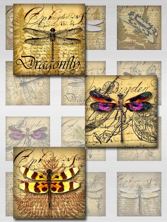 Imágenes de libélulas Ephemera helechos Digital Collage hoja cuadrada (S-62)