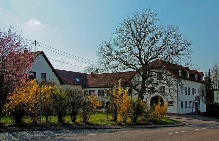 Schon was vor am Wochenende? ... Gibt ja im Saarland so allerhand zu erleben. Und das Wetter wird auch nicht soo übel. Auch nicht in Eft-Hellendorf.  :-) http://www.perl-mosel.de/ortsinfo/ortsteile/eft-hellendorf/