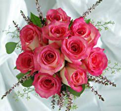 Buquê Rosas Cor-de-rosa Flores