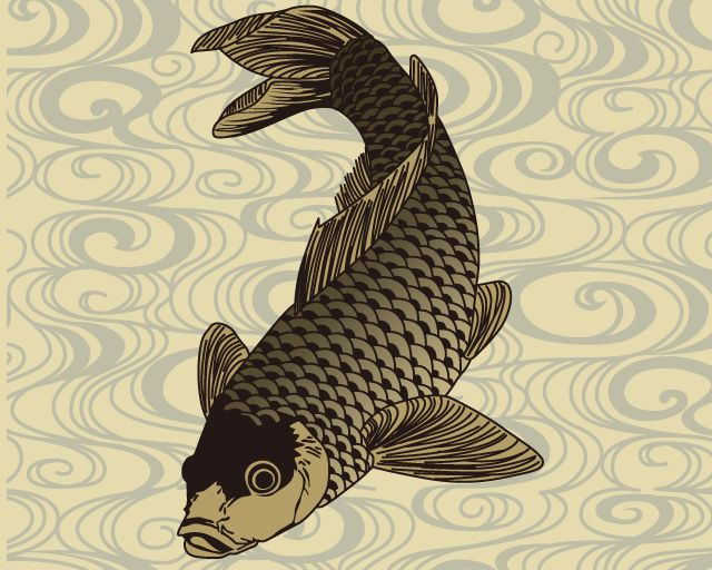 91 best images about ink on pinterest japanese koi koi for Koi fish vector