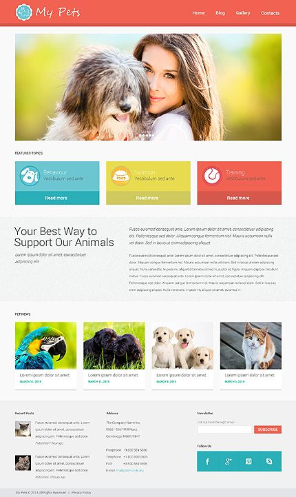Solutions for Vet Clinics or Dog Training Programmes