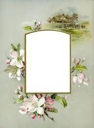 Resultado de imagen para Rpsas Frameses de flores vintage