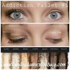 Younique Addiction Pallet #1