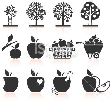 Apple Tree Growing and organic farming black & white icons Royalty Free Stock Vector Art Illustration
