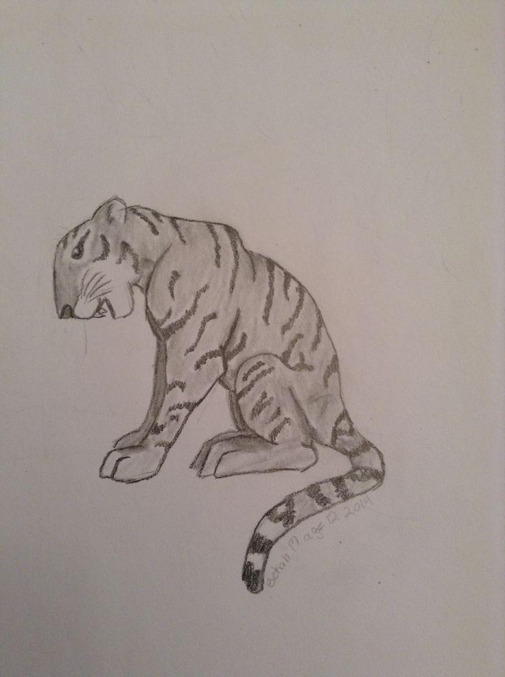 Tiger by bekah m age 12