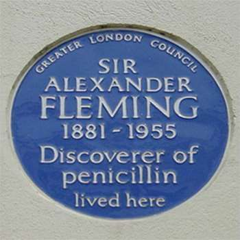 Plaque erected in 1981 by Greater London Council at 20a Danvers Street, Chelsea, London SW3 5AT, Royal Borough of Kensington and Chelsea