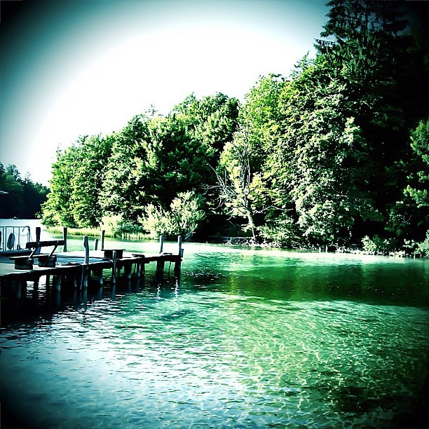 Green Land - @tatianapecanac- #webstagram: Green Land, Green Festivals