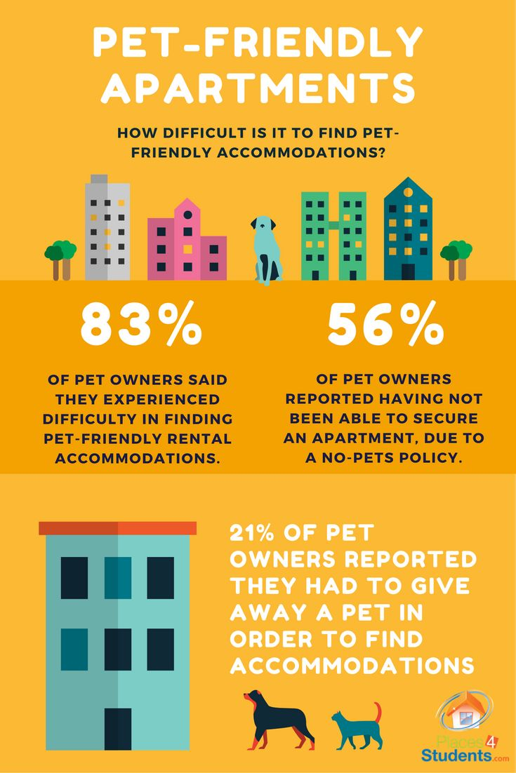 17 best images about student housing infographics on pinterest cost of living apartment. Black Bedroom Furniture Sets. Home Design Ideas