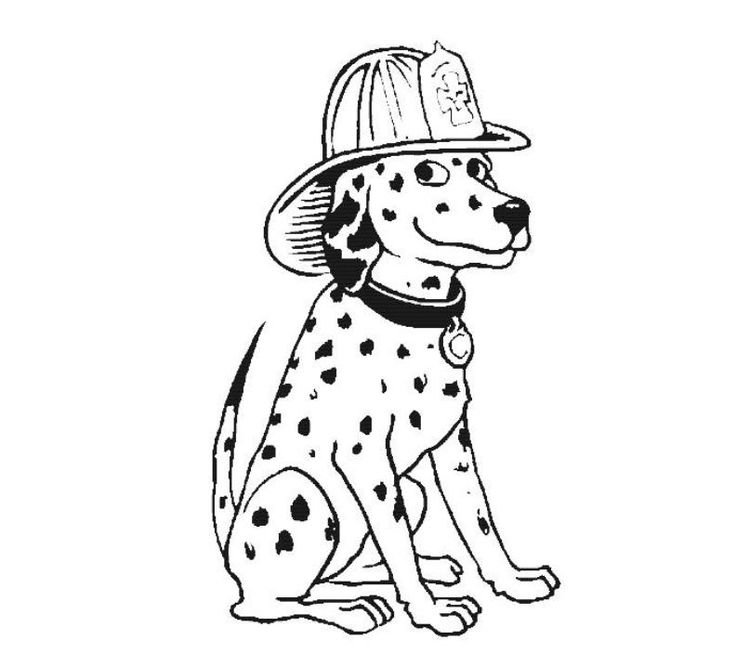 Firefighter Coloring Pages: Dalmatian Fire Dog Coloring Pages