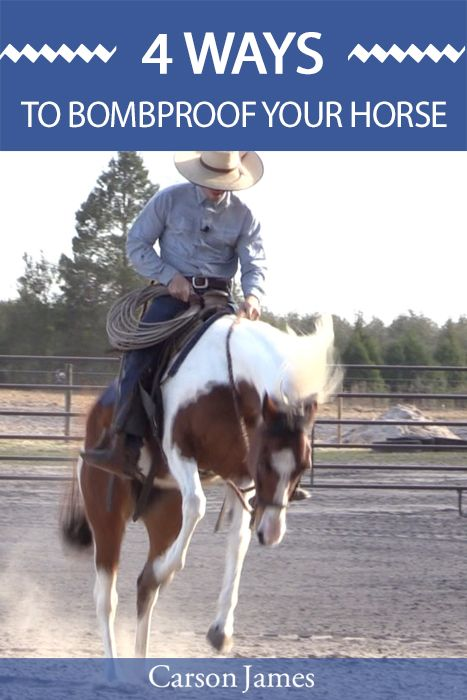 Quick video that reveals 4 things you can do to make your horse safer to ride. Watch here: http://lp.carsonjames.com/4-ways-to-bombproof-your-horse