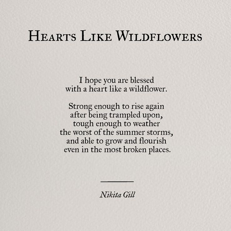 Hearts Like Wildflowers
