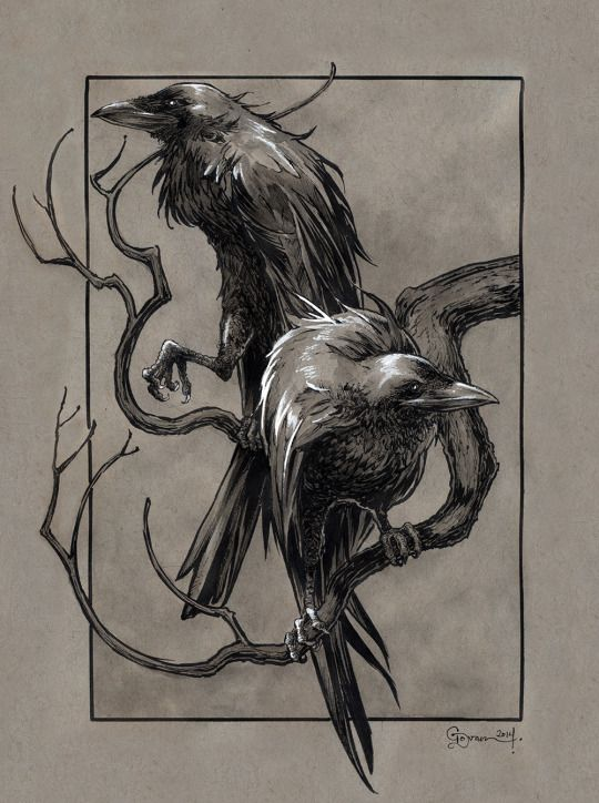 Huginn & Muninn from the Poetic Edda (Norse Mythology) by Daniel Govar