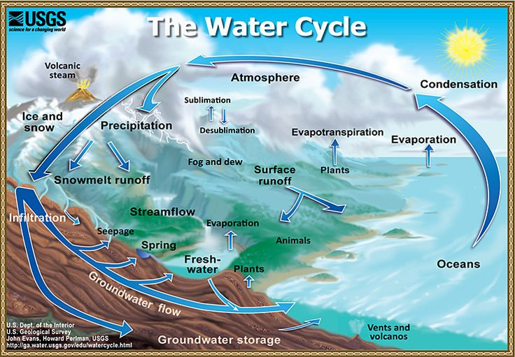 The Water Cycle: Graphic showing the movement of water through the water cycle.