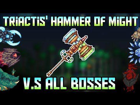 Blossum Flux V S All Bosses In Revengeance Mode! ||Calamity