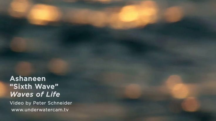 """New oceanic video for the track """"Sixth Wave"""" from my upcoming album """"Waves of Life"""" (Real Music), created by Peter Schneider from Rangiroa Atoll, French Polynesia (www.underwatercam.tv)... :)  Download a free copy of this track at Real Music website: www.realmusic.com/featured/waves-life.  And check out Peter's amazing underwater footage on his YouTube page: www.youtube.com/user/underwatercam Enjoy! :)"""