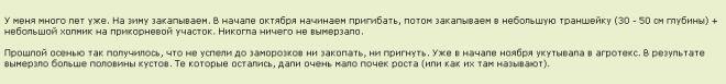 Дачницы-удачницы-23. Сезон 2017 - Страница 5 | VLADMAMA.RU