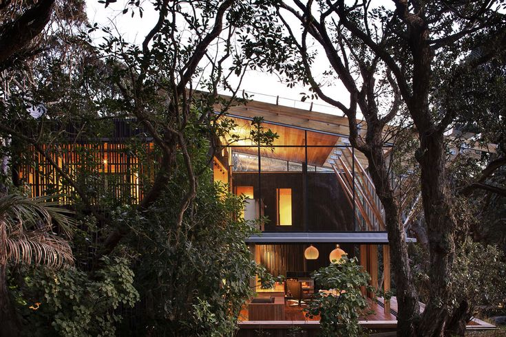 Beach house in the middle of a tall forest Modern house design