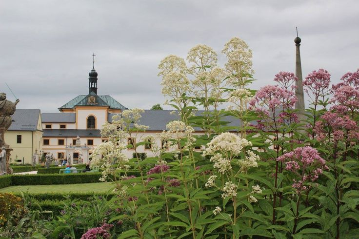herbal garden/ bylinková zahrada