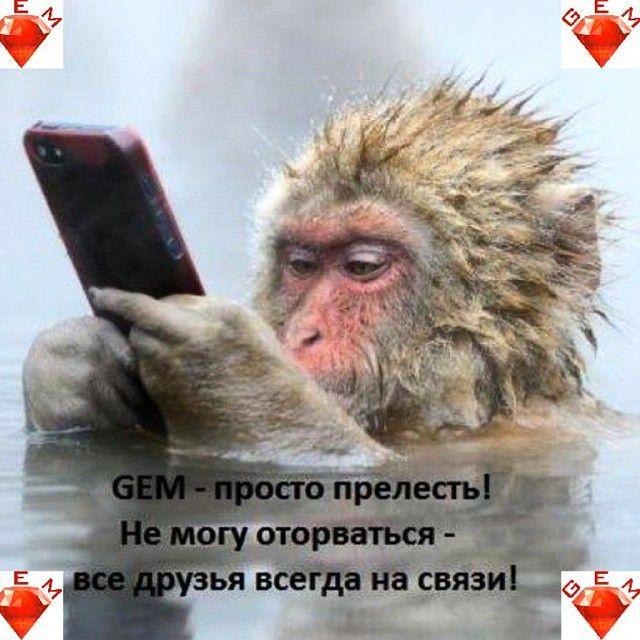 Стань со владельцем акций бесплатного приложения GEM http://www.youtube.com/watch?v=c1NJM0I0C-E