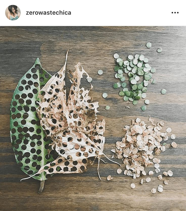 11 of the Finest Zero Waste Hacks From Your Favourite ZW Instagrammers