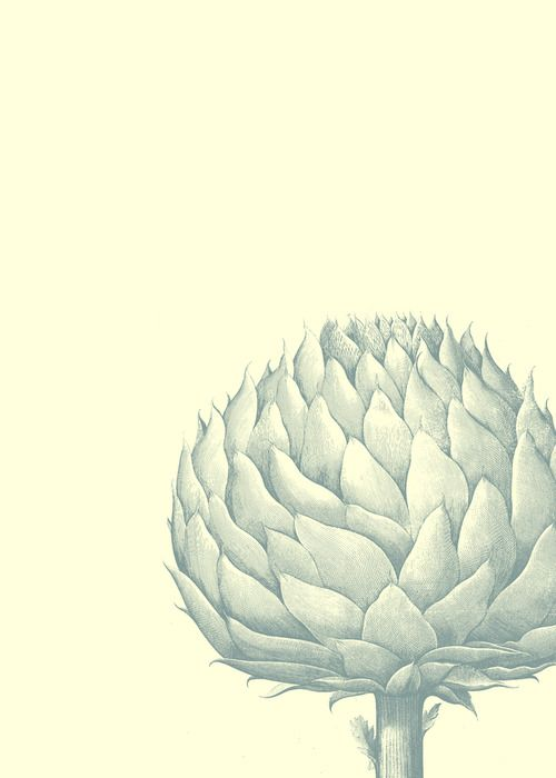 blue artichoke / thefullercollection.com