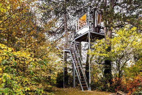 Com vista para o jardim e para as vinhas Heilbronn, esta casa da árvore se integra e reflete seu entorno graças ao acabamento espelhado
