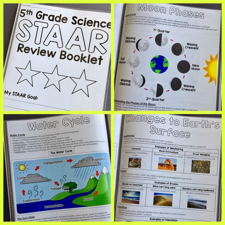 STAAR Science Review Booklet. This resource includes all 4 Reporting Categories for the 5th Grade Science STAAR Test. Every readiness and supporting TEKS is covered in this booklet. Use this resource to help your students review important concepts before the end-of-year test.