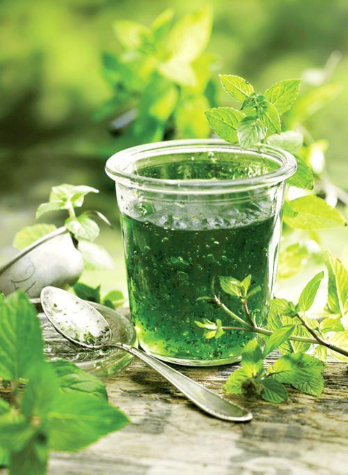 Mint Jelly | Green Scene | Pinterest
