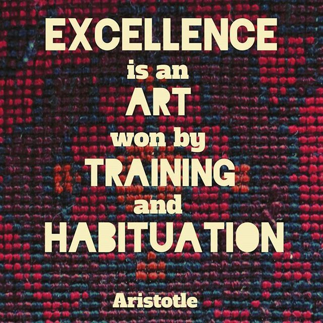 """""""Excellence is an art won by training and habituation. We do not act rightly because we have virtue or excellence, but we rather have those because we have acted rightly. We are what we repeatedly do. Excellence, then, is not an act but a habit.""""  Aristotle   #philosophy #aristotle #win #excellence #training #art #tapestry #habit #habits #great #greatness #excel #excellent #vehemenceandemergence #voiceofthevoiceless #quotes #quote #philosopher #success"""