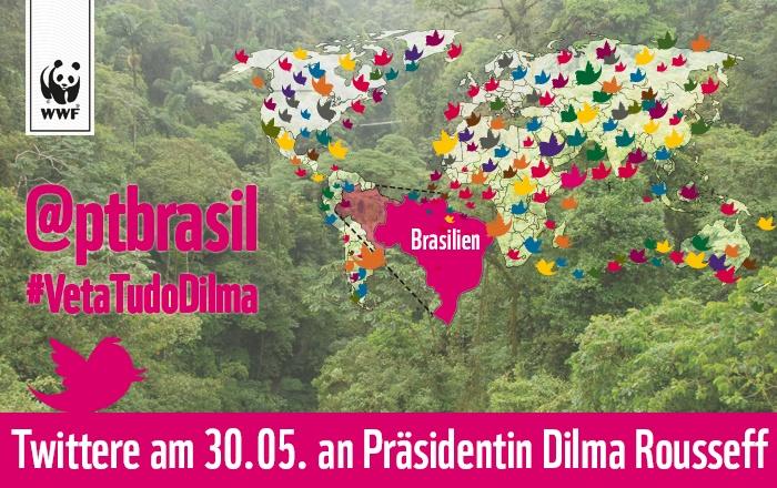 Die Brasilianische Präsidentin Dilma Rousseff muss in den nächsten Tagen über das verheerende Waldgesetz entscheiden. Dieses Gesetz hätte verheerende Auswirkungen auf unser aller Klima. Darum muss sie ihr Veto einlegen! Fordere jetzt Präsidentin Dilma Rousseff auf ihr Veto einzulegen und twittere ihre Partei @ptbrasil an! Pls Repin! www.wwf.de/SOSBrazil #VetaTudoDilma #SOSBrazil