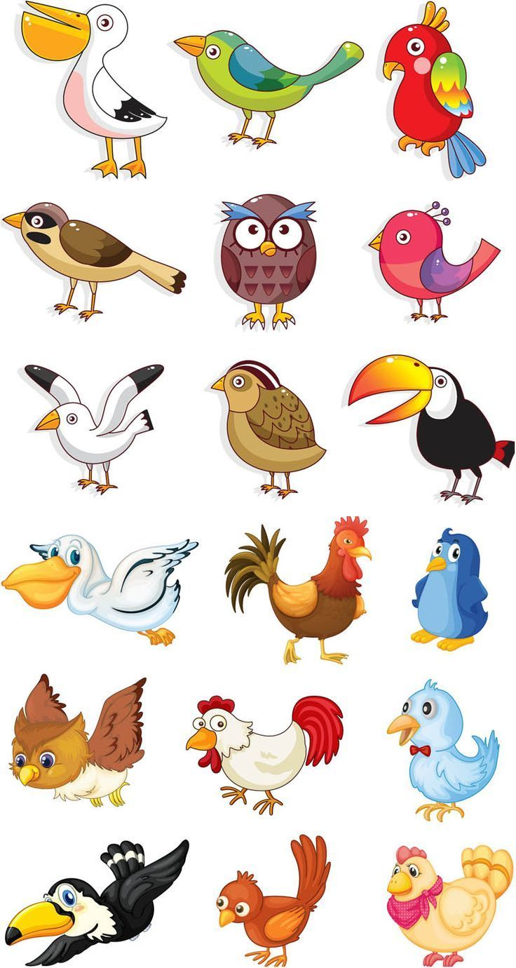 Bird Baths Cartoon Birds Cute Birds Animal Drawings