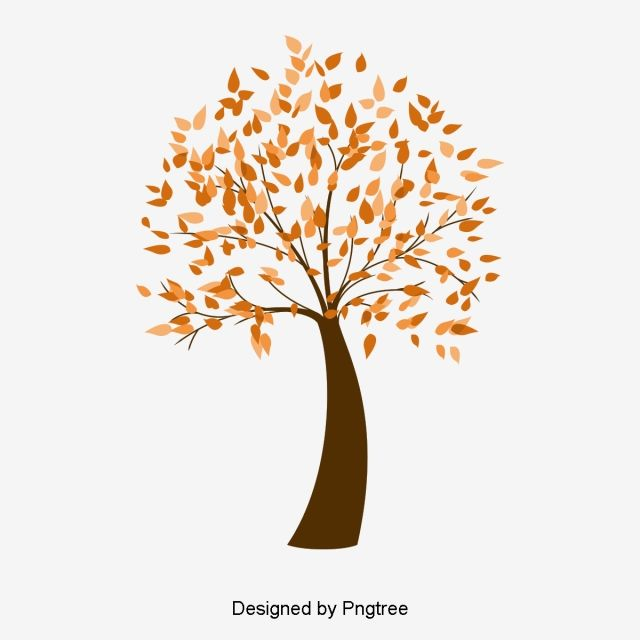 Autumn Tree Vector Autumn Leaf Vector Leaves Png Transparent Clipart Image And Psd File For Free Download Autumn Trees Leaves Vector Autumn