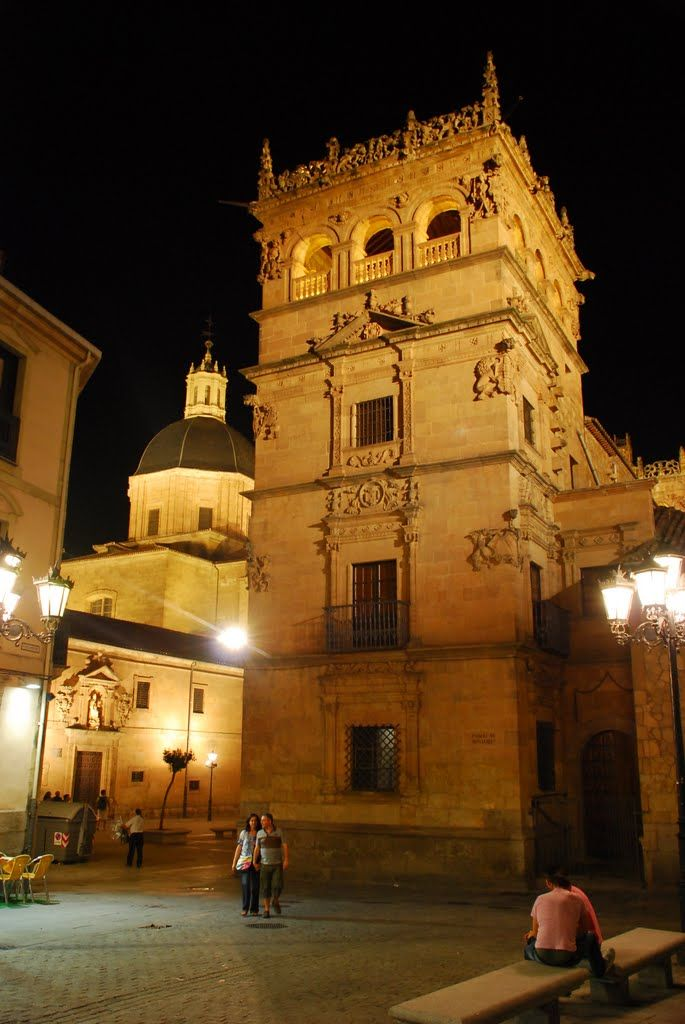 Palacio de Monterrey,  Salamanca  Spain