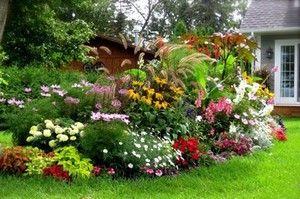 Клумба непрерывного цветения своими руками – от первоцветов до морозов
