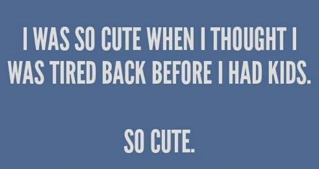 Actually not cute at all