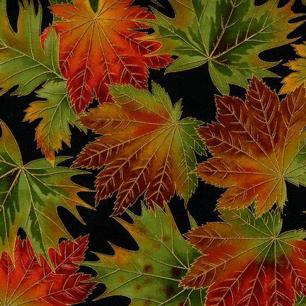 Robert Kaufman Fabrics: ETJM-6638-2 BLACK from Nature's Brilliance 4