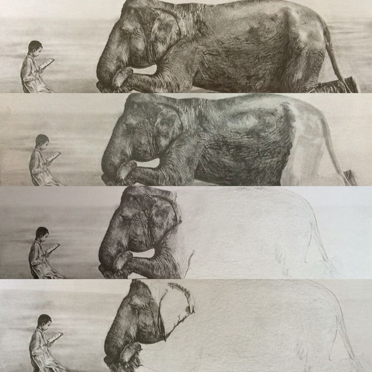 Drawing elephant and boy reading