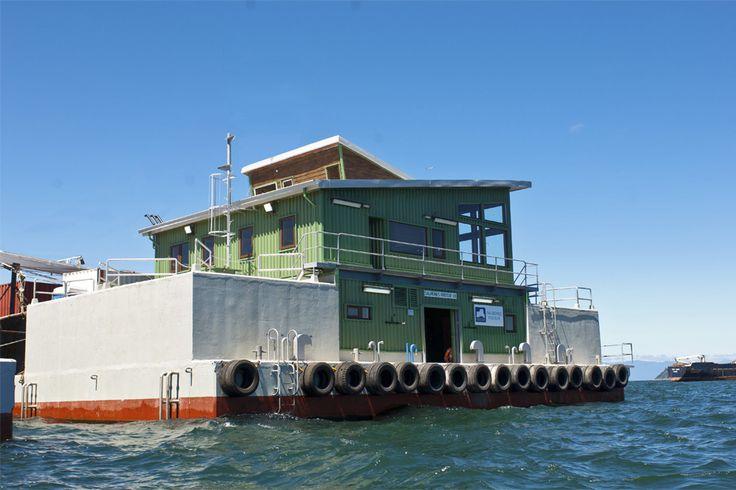 Habitabilidad Pontón Frío Sur | DAARQ #arquitectura flotante #arquitectura #pontón #diseño #surdechile