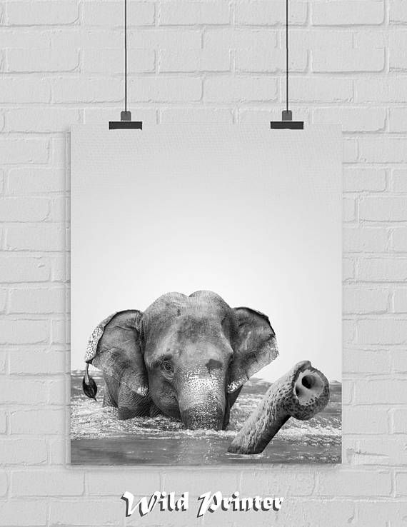 Baby Elephant Bathroom Wall Art Safari Nursery Home Decor Etsy Nursery Animal Prints Safari Nursery Elephant