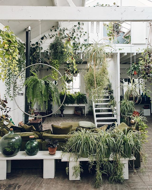 A little treat from us; take a tour through this urban jungle via the link in our profile.