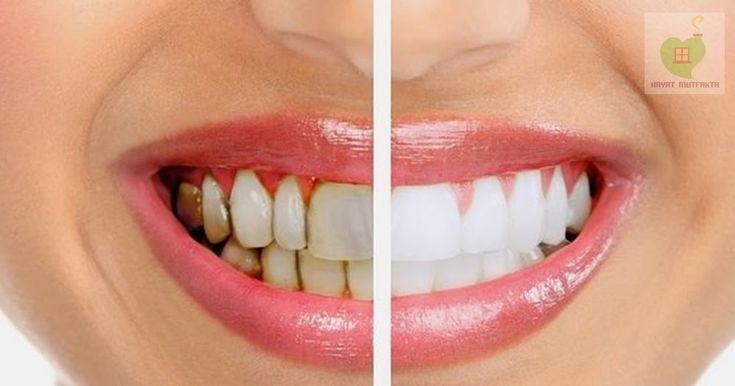 Prof. Dr. İbrahim Saraçoğlu diş eti çekilmesi, diş etleri iltihabına, ve dişteki kanamalara karşı bu kürü öneriyor. Bunun haricinde fa...