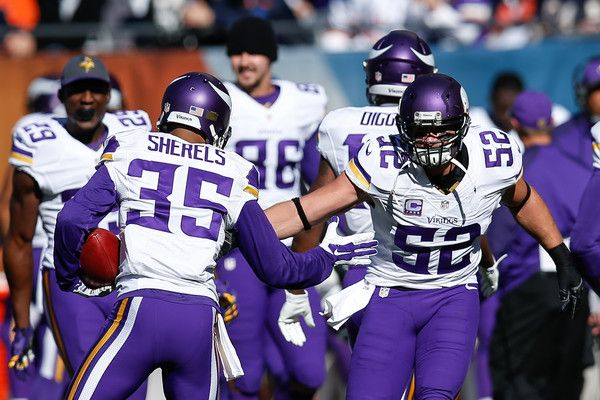 NFL Odds, Week 15, Chicago Bears at Minnesota Vikings, Football Sports Betting, December 20th 2015