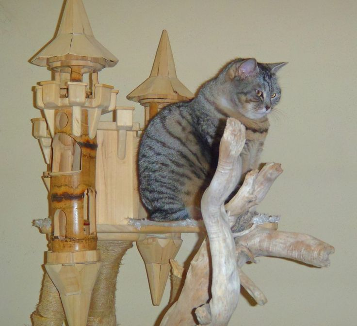 Playzone for cat luxury cat castle for Castle cat tower