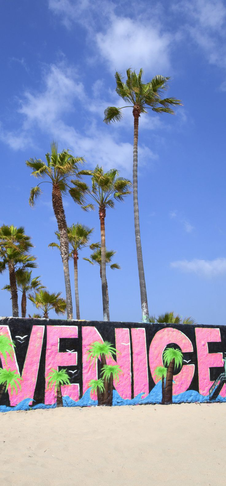 Venice Beach, California, USA