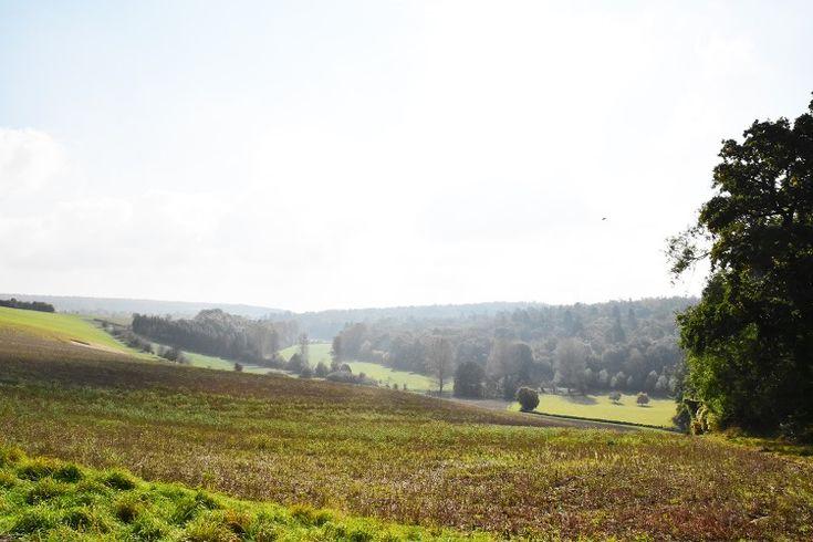 la campagna inglese più bella, viaggio nei Cotswolds