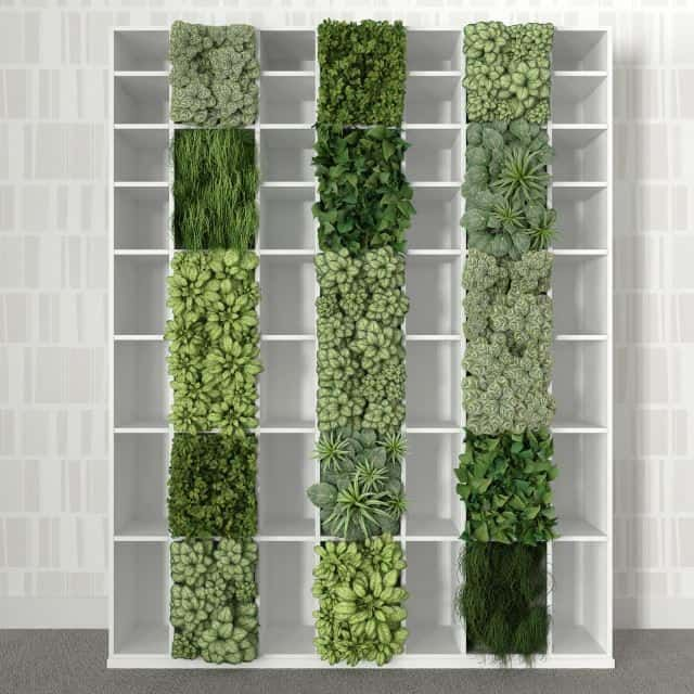 This bookshelf garden is a super cool way to create your own vertical garden with simple plants and moss. Since the bookshelf has spaces already in it, it's easy to turn this into a vertical nursery. You can either set plants inside the specs or fill the actual spaces with soil and a crate. This photo depicts an interesting arrangement of green plants and succulents that makes the concept so unique.