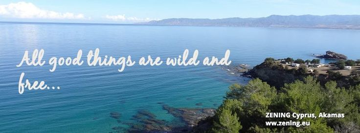 #Nature is one of the best things existing on our planet! Let's keep it that way ♥ #zening #resort #latchi #cyprus #hotel #wild #love #summer #green